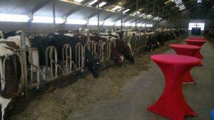 Catering boerderij